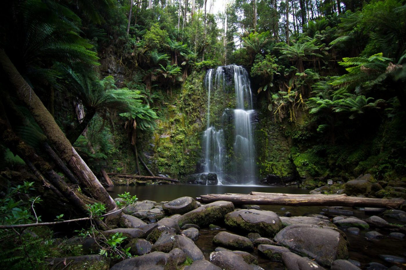 The best day hikes near Melbourne that aren't the 1000 steps